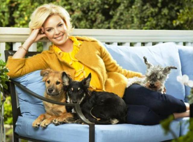 Katherine Heigl dogs