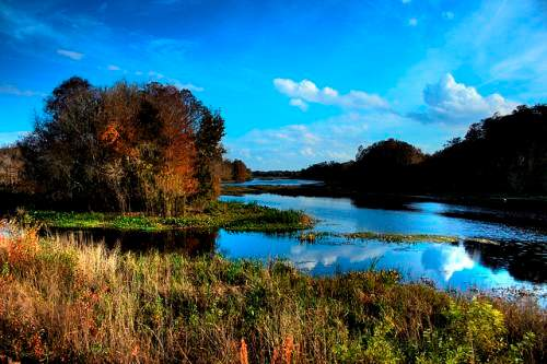 Withlacoochee river, Florida