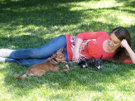 alyssa milano with her pet dogs