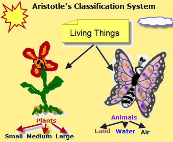 Aristotle Classification