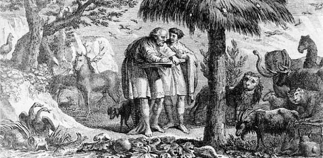 Aristotle Studying Animals