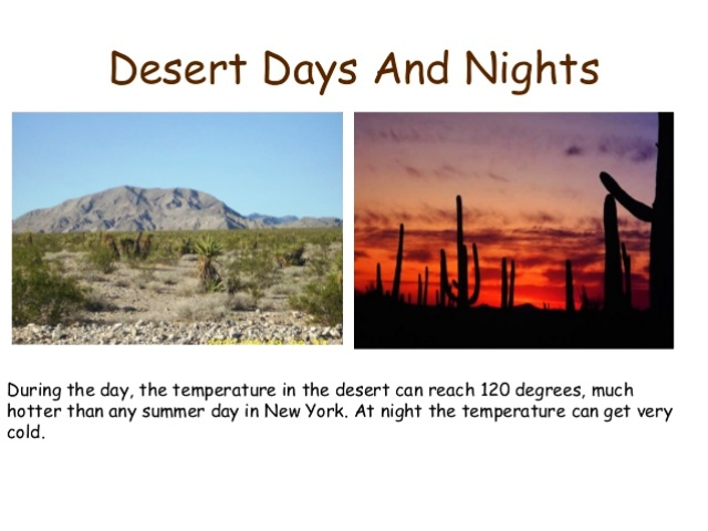 Desert Temperature