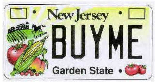 New Jersey garden state