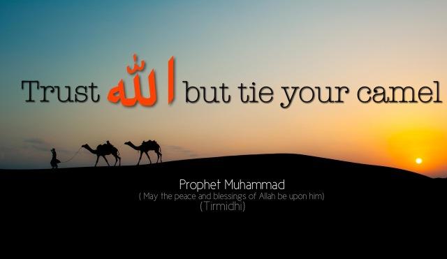 Prophet Muhammad Camel Boy
