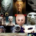 20 Interesting Facts about Aliens