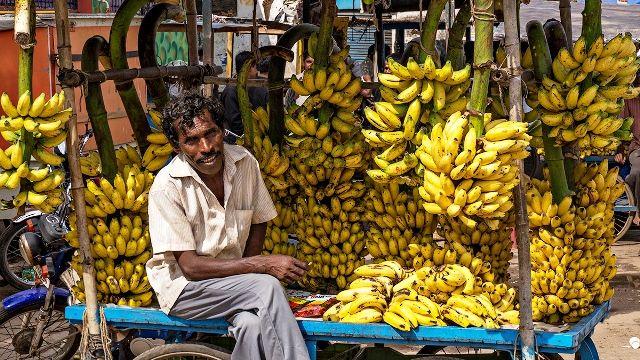Banana in India