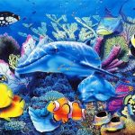 20 Interesting Facts About Fish