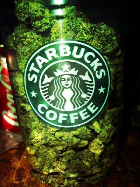 Marijuana and Starbucks