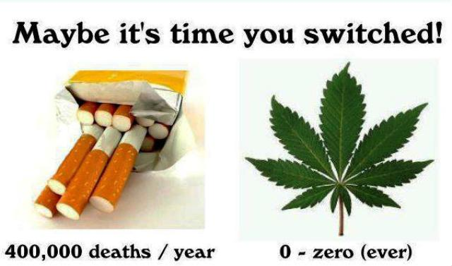 Marijuana vs Cigarette