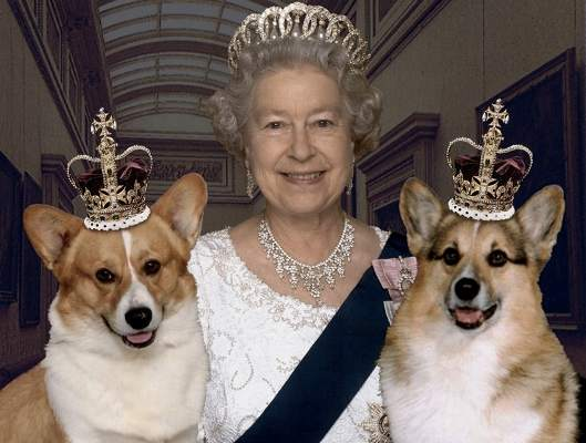 The Queen with two corgie