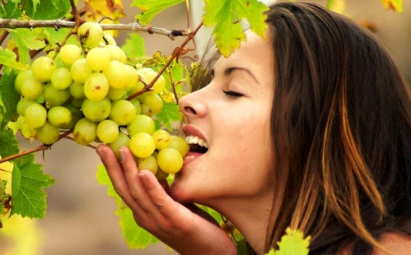 Grapes Anti Aging Agents