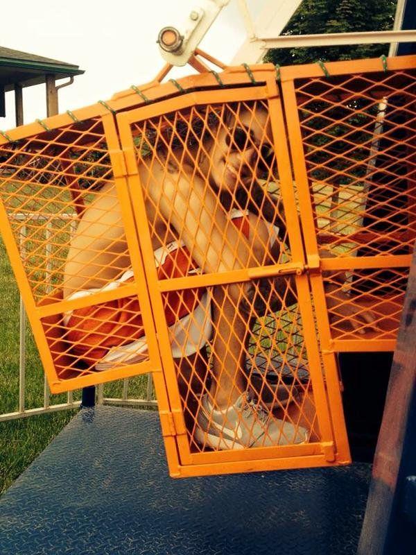 Justin Bieber Claustrophobic