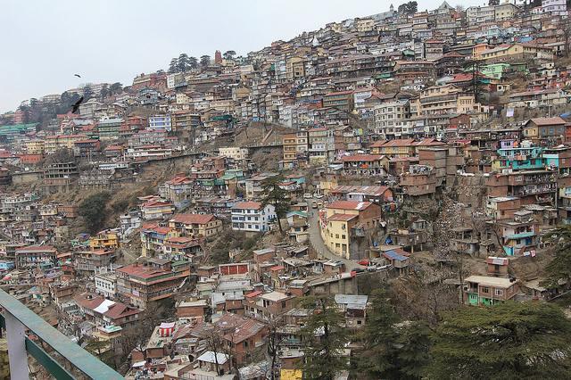 Overweight Shimla
