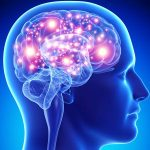 21 Interesting Facts About Human Brain