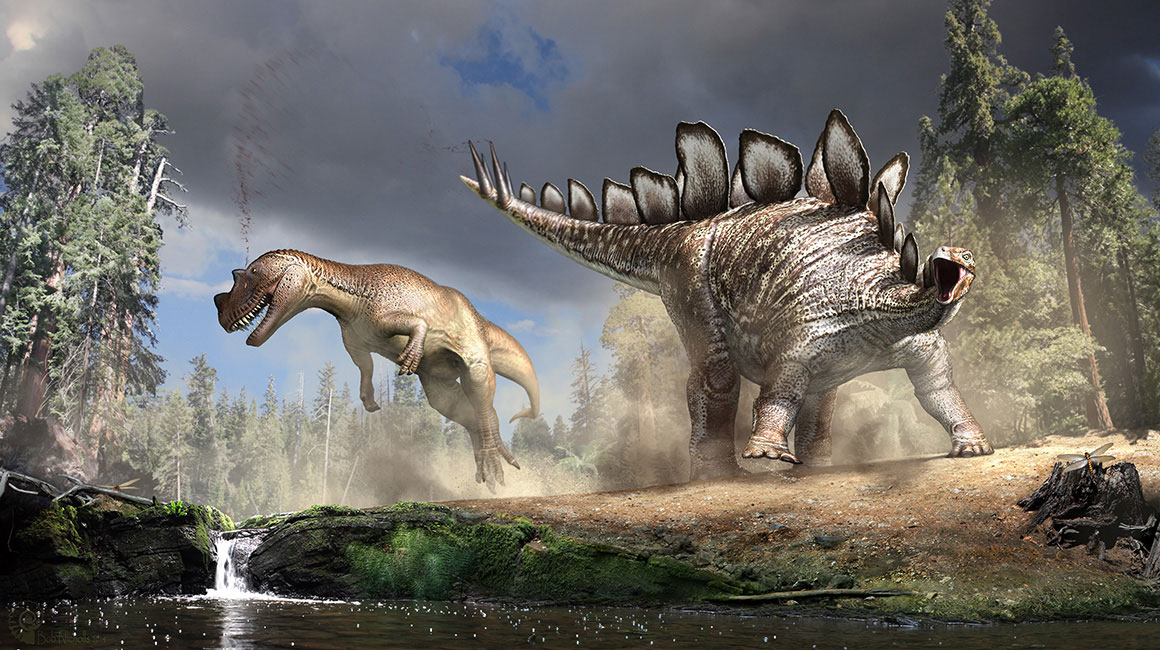 Artist's reconstruction of a Stegosaurus that has just hit a Cer