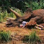 10 Interesting Facts About Triceratops