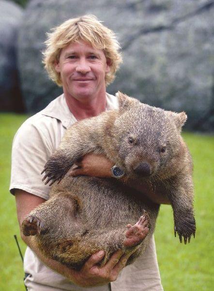 wombat5