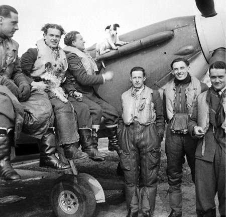 Polish Squadron