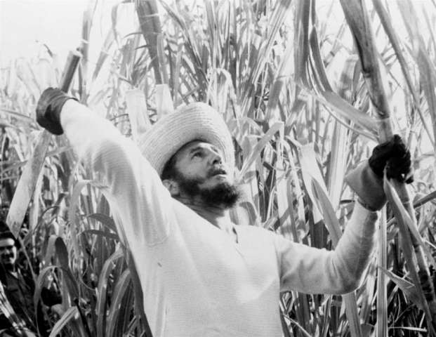fidel-castro-sugarcane-farm