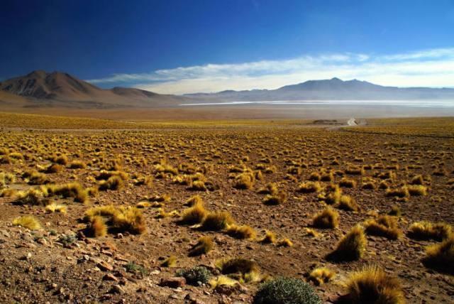 Antiplano Plateau