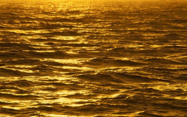 Gold in the ocean
