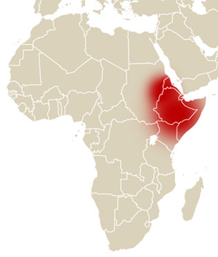 Location of Horn of Africa in Red