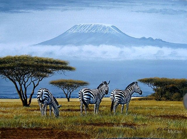 Zebras at the foot of Mt. Kilimanjaro