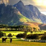 19 Interesting Facts About South Africa