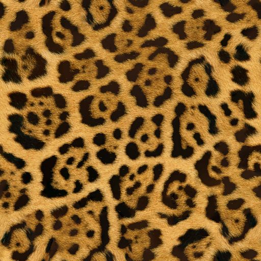 Fur of Cheetah