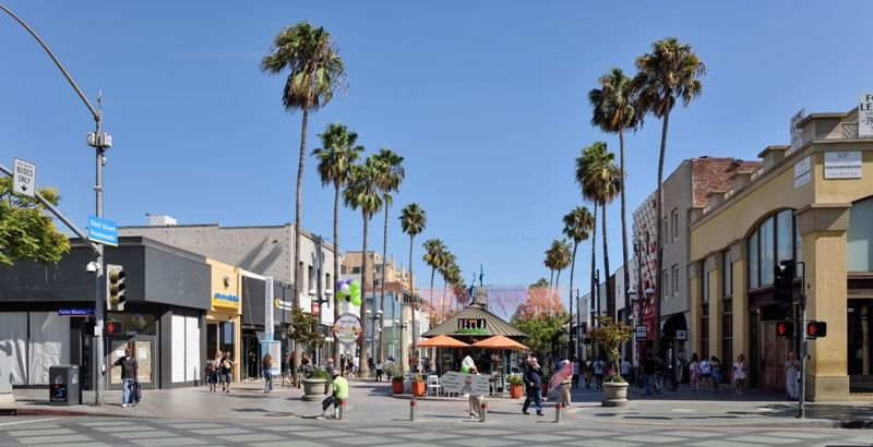 Los Angeles Official Palm Tree