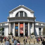 13 Interesting Facts About National Museum Of Natural History (Washington D.C.)