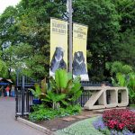 10 Interesting Facts About National Zoological Park (Washington)