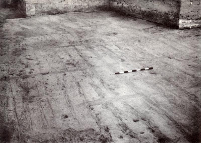 Kalibangan Ploughed Field
