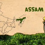 17 Interesting Facts About Assam