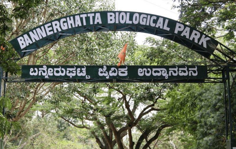 Bannerghatta Biological Park Bengaluru