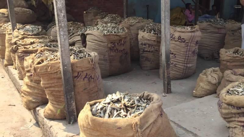 Dry Fish Market Jagiroad Assam