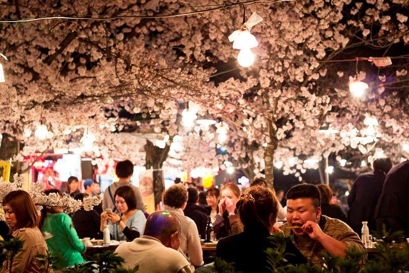 Japan Parties