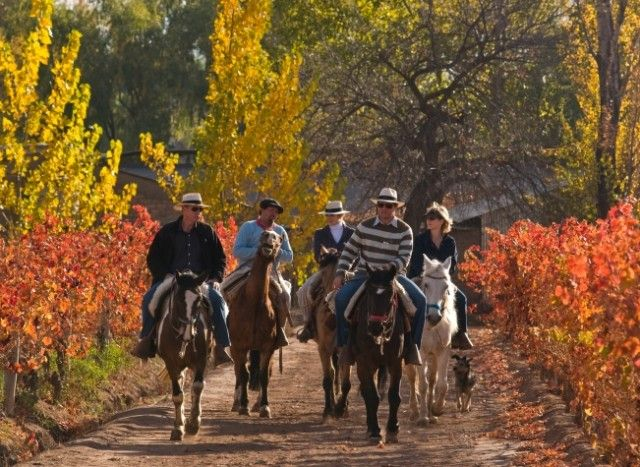 Horse Riding in Mendoza