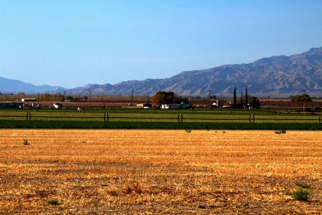 Farmlands in California