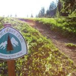 19 Interesting Facts About Pacific Crest Trail