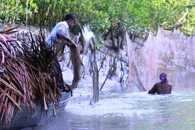 Fishermen in the Sundarbans