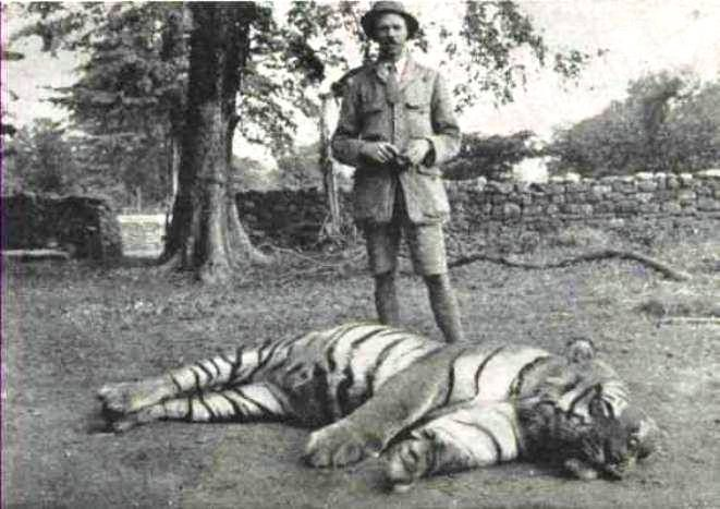 Jim Corbett with the dead Champawat Tiger in 1911