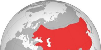 Mongol Empire at its largest extent in early 14th century