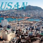 15 Interesting Facts About Busan