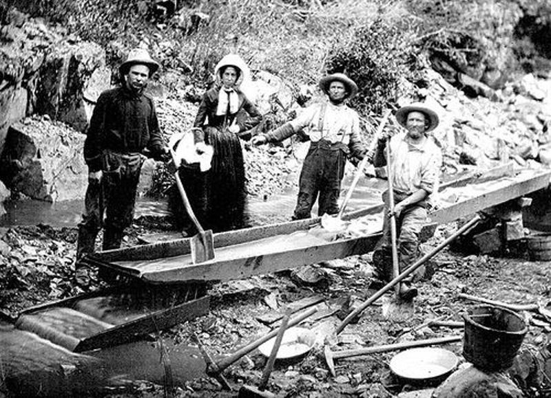 California Gold Rush Miners