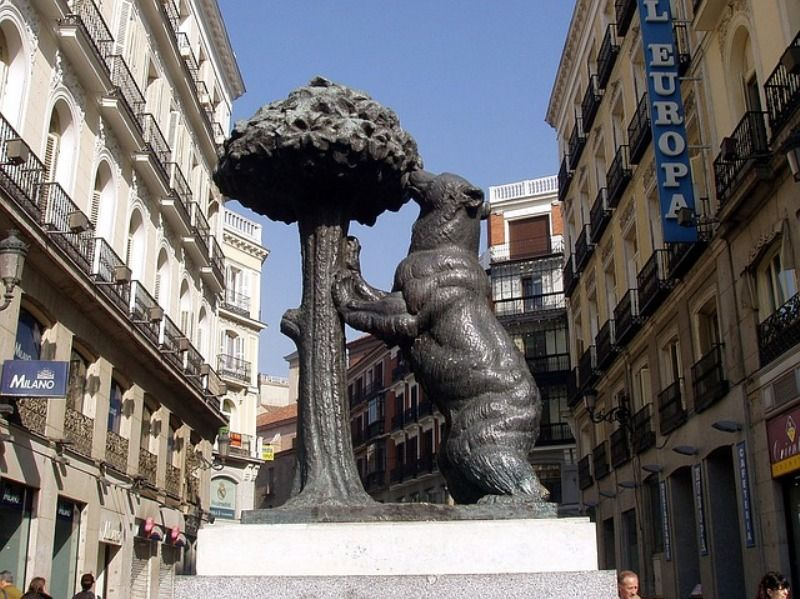 Madrid Bear And Arbutus