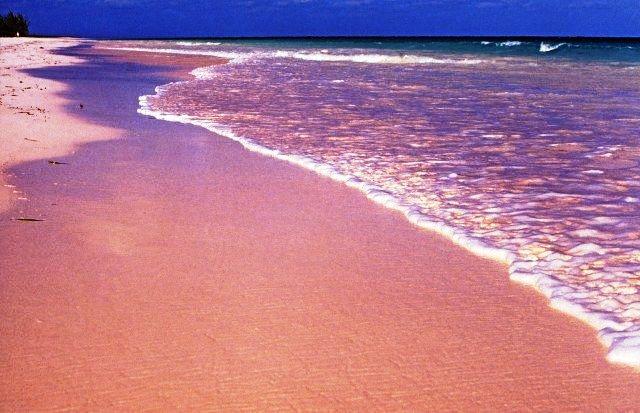 Pink Sand Beach, the Bahamas