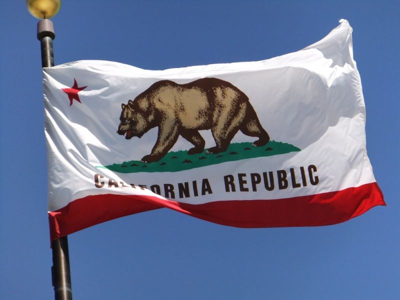 The Flag Of California