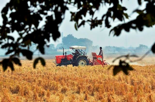 Wheat Production in Punjab