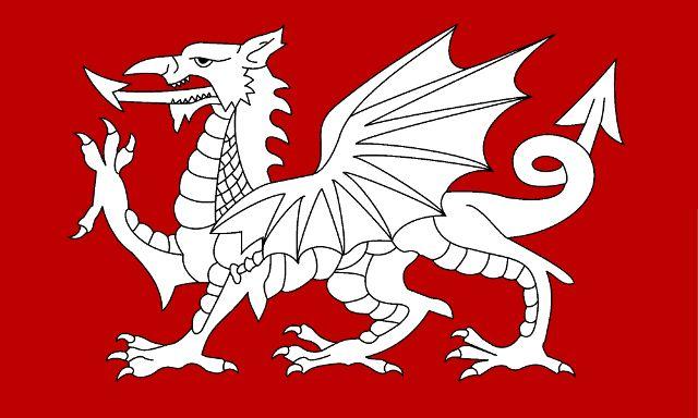 The White Dragon flag of England